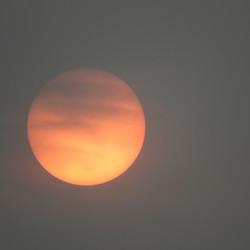 Zon gefilterd door saharazand