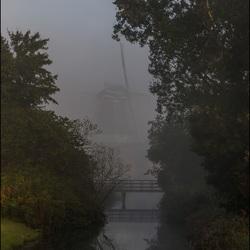 Ochtend mist.