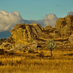door Madagaskar