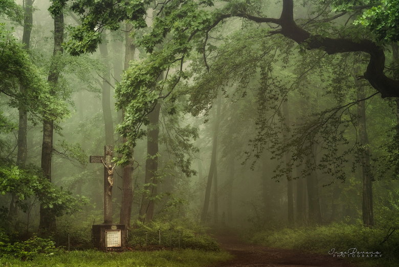 Sacred Ground. -