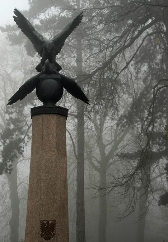 poolse adelaar - pools monumet in het Wilhelminapark/Breda in de mist