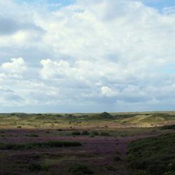 panorama westerslag Texel
