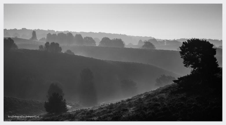 Posbank na zonsopgang - Kort na zonsopgang bloeiende heide vastleggen....vond het landschap in zwart-wit toch ook mooi uitkomen