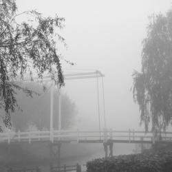 Koude wintermorgen