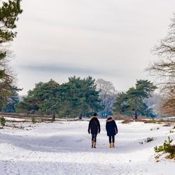 wandelaars in de sneeuw