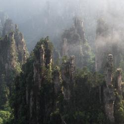 Misty Avatars