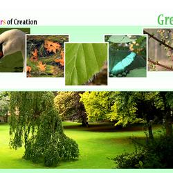 COC: Green