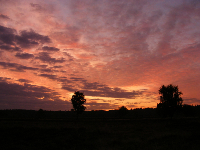 Zonsondergang op Groevenbeekse Heide - Zonsondergang na een zomerse dag op de Groevenbeekse Heide bij Ermelo