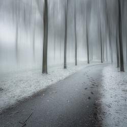Mystery Snowfall