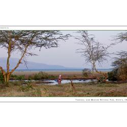 Hippo's Lake Manyara NP