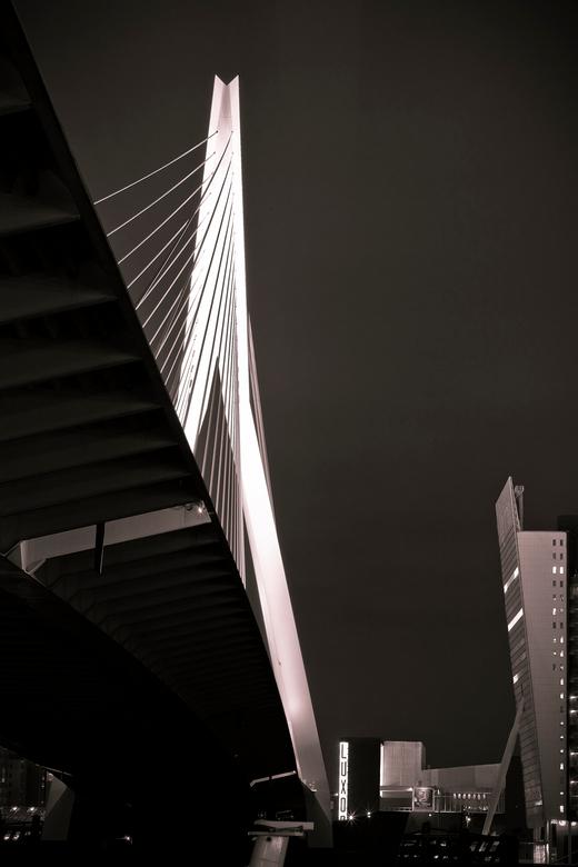 Erasmusbrug - Onder de brug