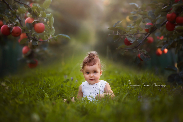 Apple of my eye -