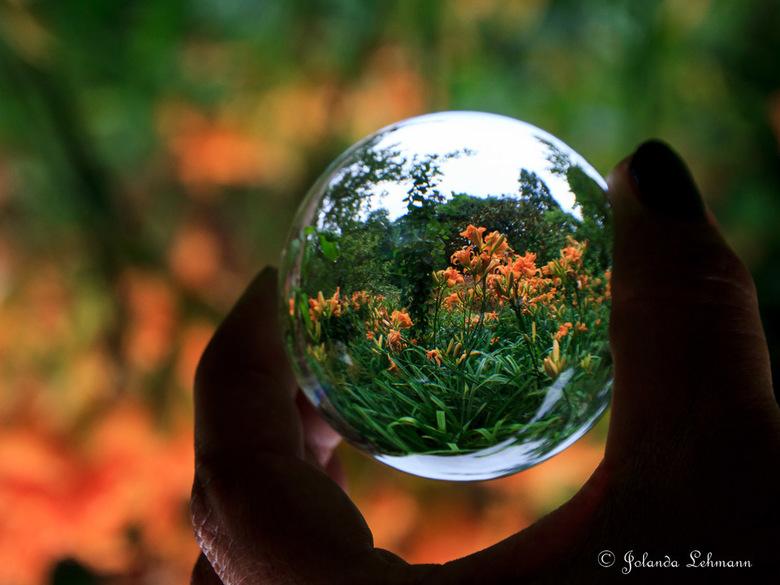 De wereld door een glazen bol - Weer eens wat anders geprobeerd. Fotograferen door een glazen bol. Super leuk om te doen en het zoeken naar de juiste