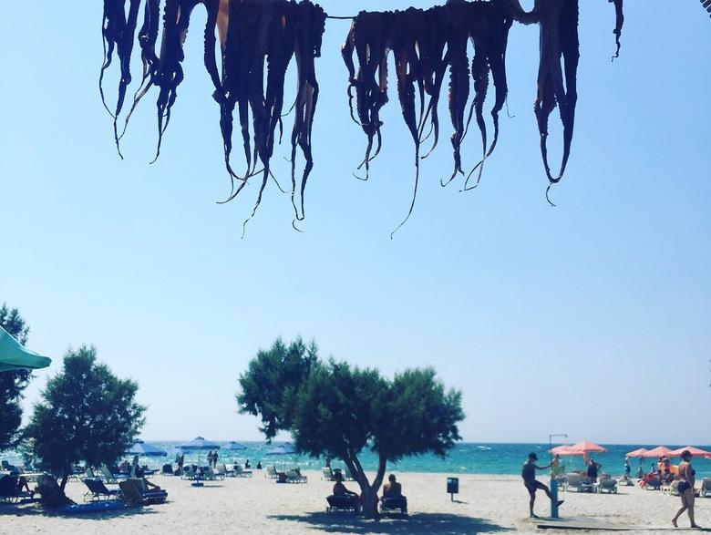 De Griekse waslijn - Lunch aan de waslijn met uitzicht op zee