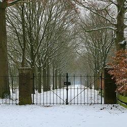 winter hek
