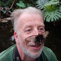 Vlinder op mijn neus....
