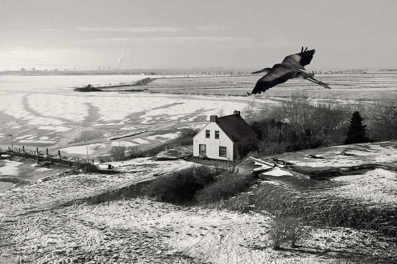 Vieuw through bird eyes - Zicht vanaf Vuurtoreneiland Durgerdam