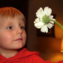 wat een mooie bloem