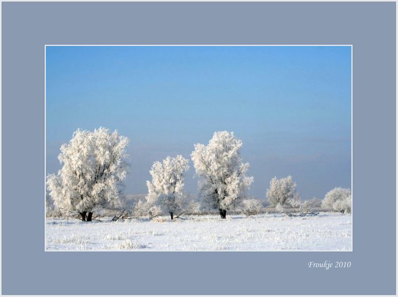 winter  - Nog maar een winterplaatje .<br /> Bedankt voor de reacties op mijn ganzenfoto .<br /> Groetjes Froukje