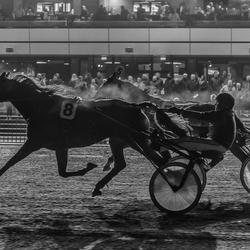 Wedstrijd paard rennen