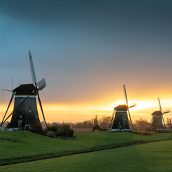 De molens van Stompwijk