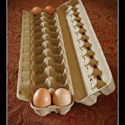 King Size eierdoos 2