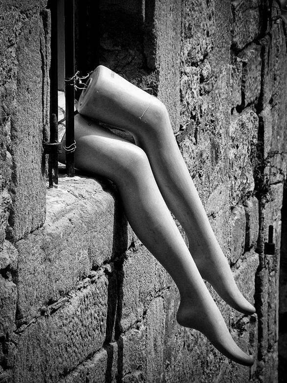 legs -
