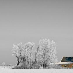 boerderij in winterlandschap