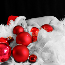 Vrolijk kerstfeest!!