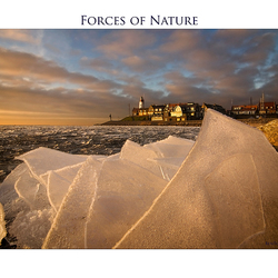 Forces of Nature 8