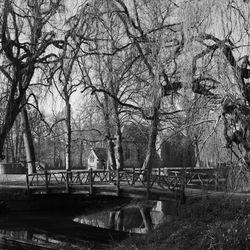 luguber park