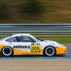 Porsche DSC 2009