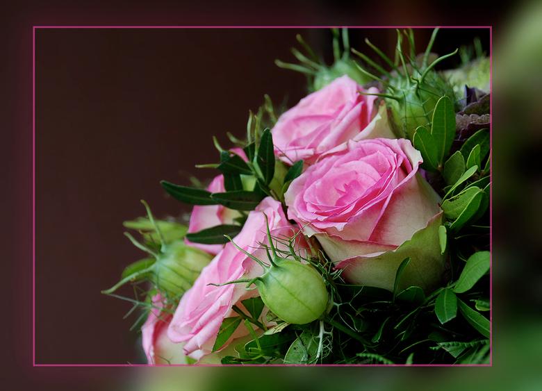 Pink Ribbon 7 - Voor Liliane,<br /> die wij vandaag ten grave hebben gedragen na een korte maar moedige en verbeten strijd tegen deze vreselijke ziek