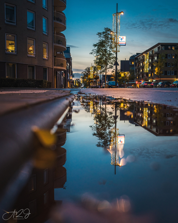 Puddle Vision -