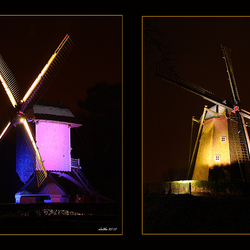 Bokrijk by night