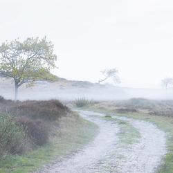 Terschelling - misty morning