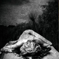 sur la tombe de ton amour