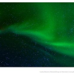 The auroral zone
