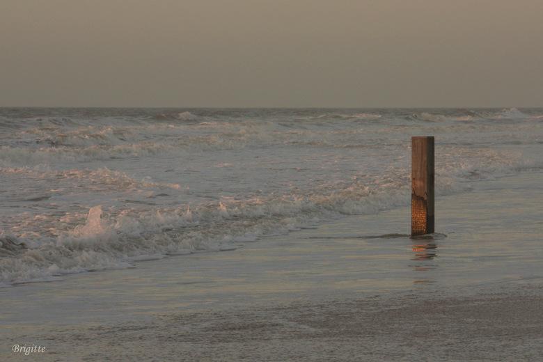 paal - Een foto van winter 2008. Koud vroeg laag licht. Maar met de computer flink opgelicht. Is het nu wat aangenamer?<br />