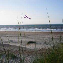 zweefvliegen op strand