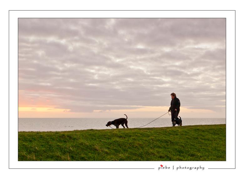 Walking the dogs... - Deze foto maakte ik kort na die van de pier bij Hindeloopen (zie mijn vorige upload). Ik zag de dame al aankomen en nog net zoda
