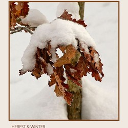 Herst & Winter