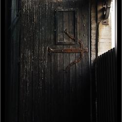 Duif op een deur