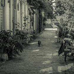 Zomaar een straatje