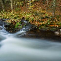 Kleiner Regen, Bayerischer Wald.