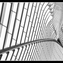 Belgium architecture 24