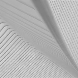 Calatrava's Guillemins 11