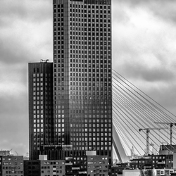 Beautiful Rotterdam.
