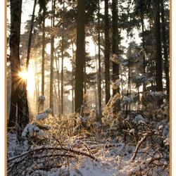Sneeuw van weleer