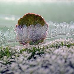 Winterlandschapje.